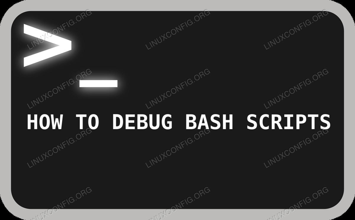 Bash Terminal